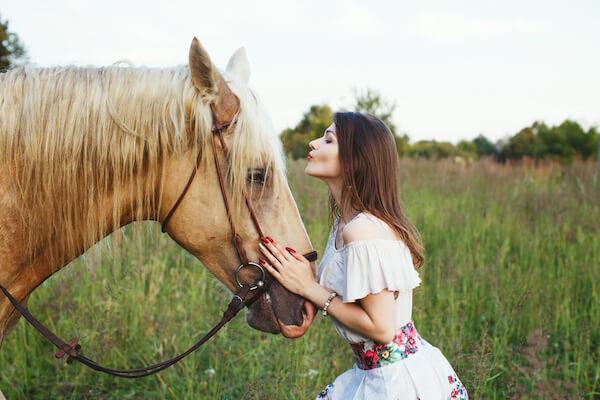 Fotograf-Tiere-Pferde-Hunde-Rosenheim-Prien-Aschau