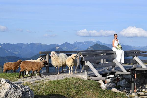 Hochzeit-Bayrischzell-Fotograf-Speckalm-Brautpaar